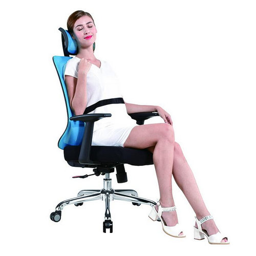 Full Function Modern Design Office Chair Mesh Chair With Adjustable Lumbar Support